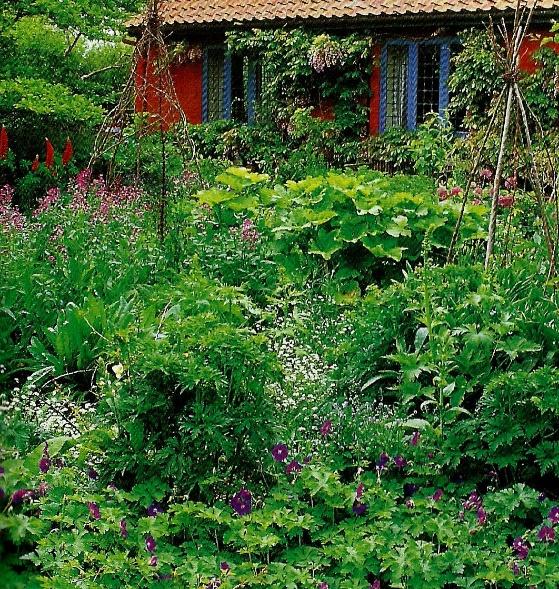 couverture végétale
