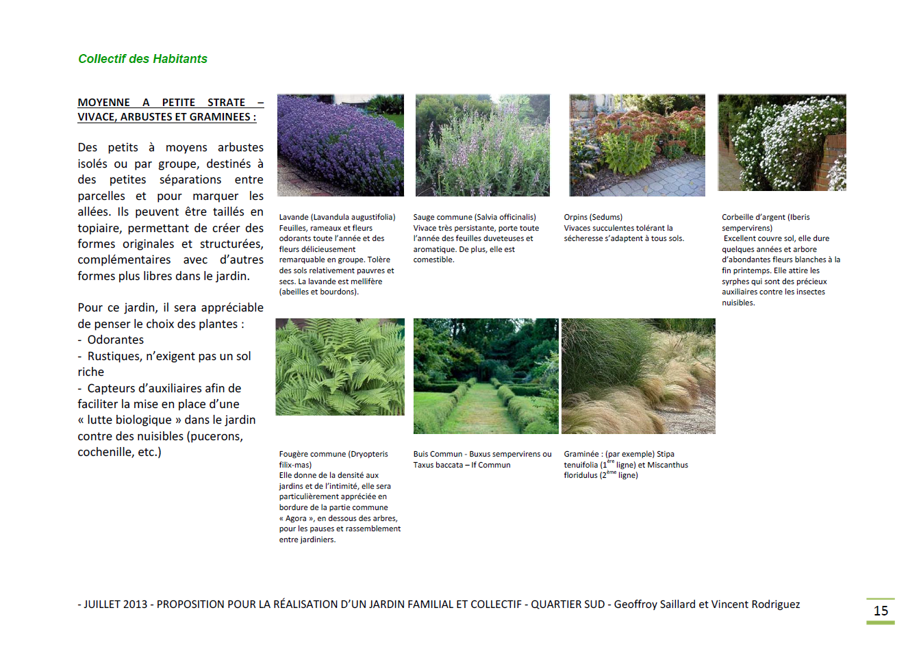 Jardin familial - palette végétale