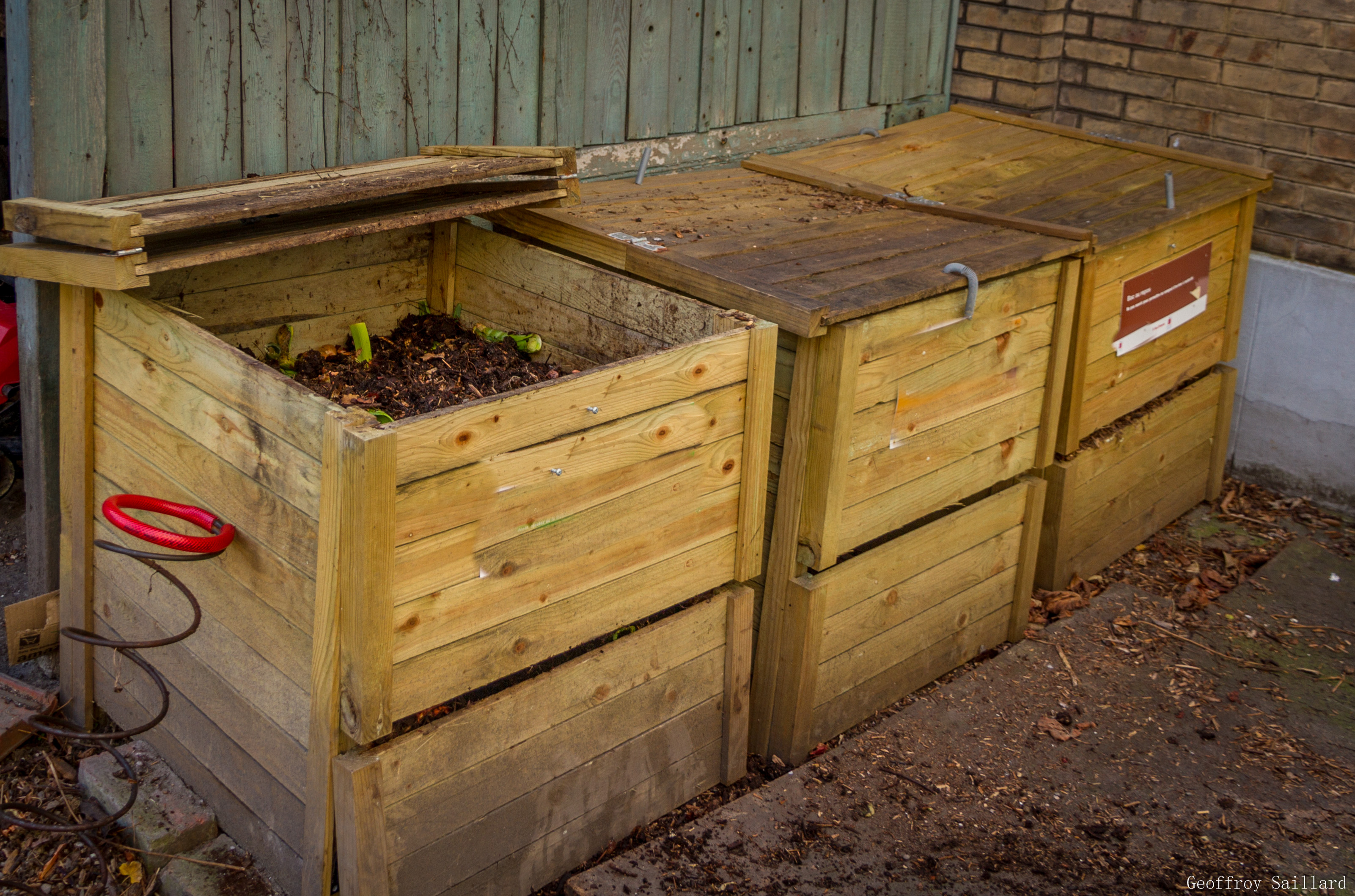 Compost De Feuilles D Érable les entretiens biologiques | contemplavert