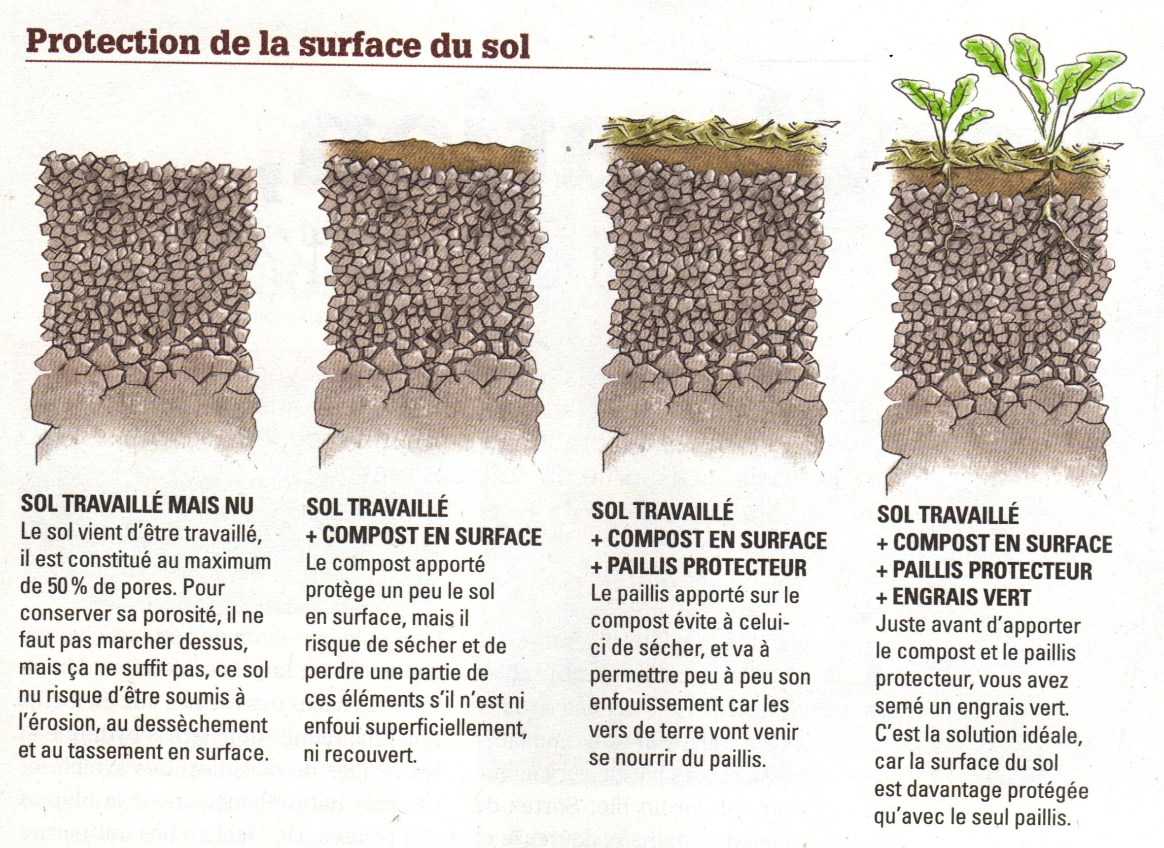 Sol Argileux Avantages Inconvénients le sol vivant et la terre du jardin | contemplavert